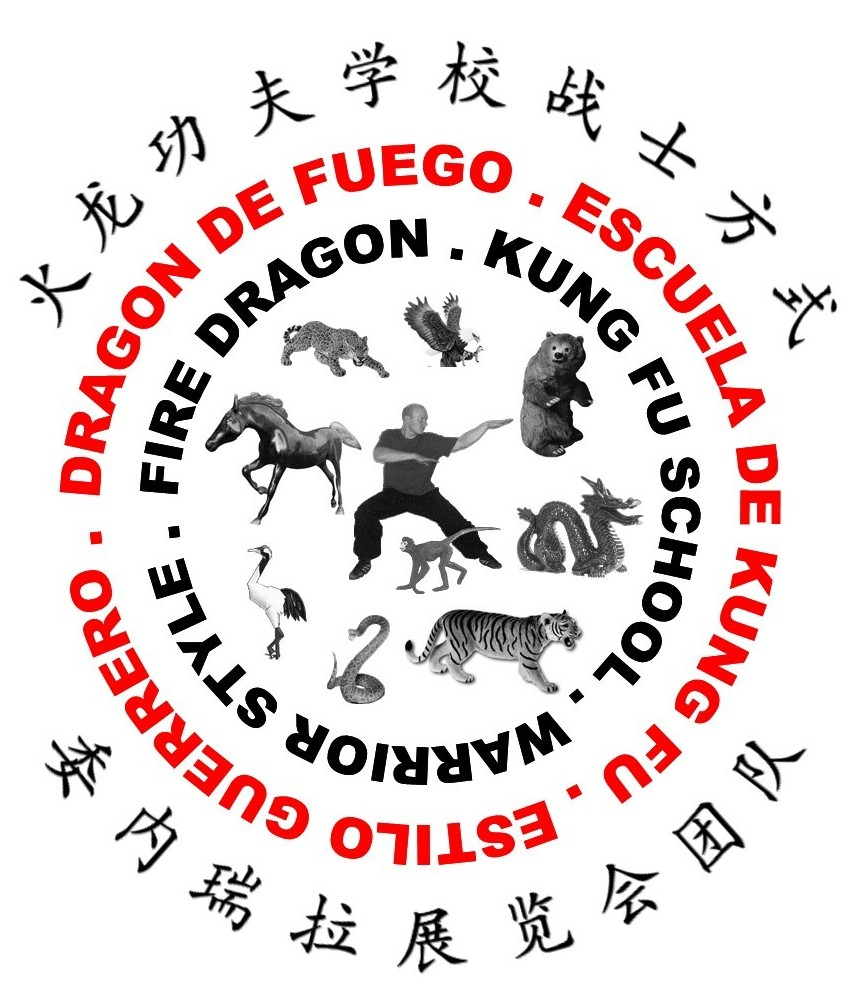 Fire Dragon Warrior Style Kung Fu School